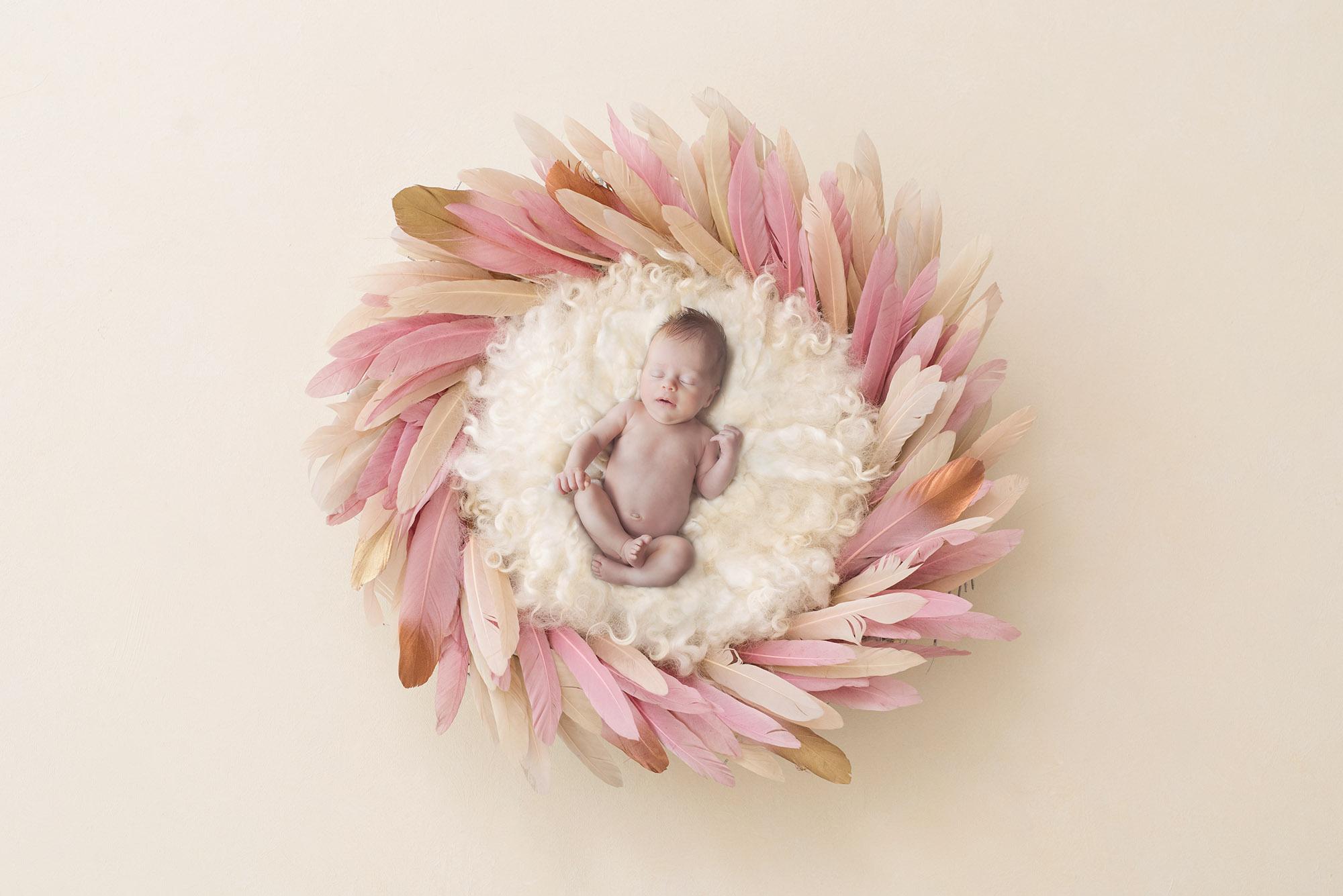 Newborn photographer Sutton coldfield