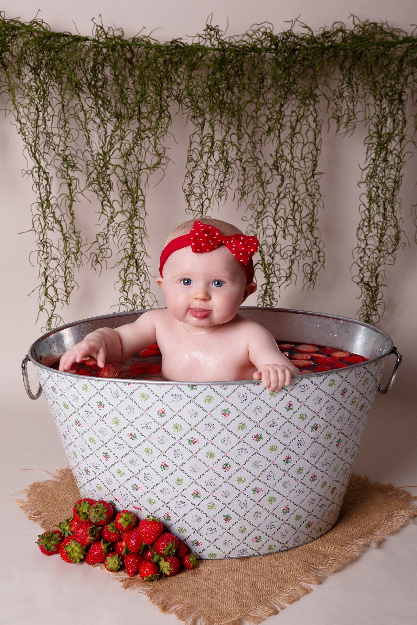 Strawberry splash sitter session sutton coldfield
