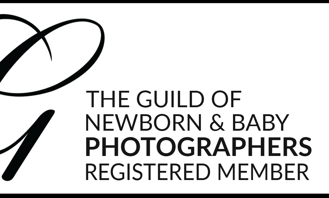 The guild of photographers member